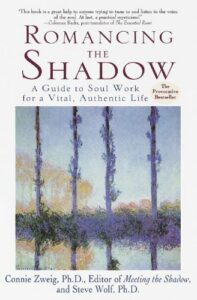Romancing the Shadow book